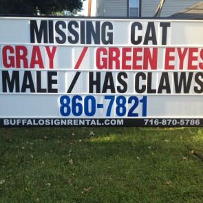 Missing Cat Sign